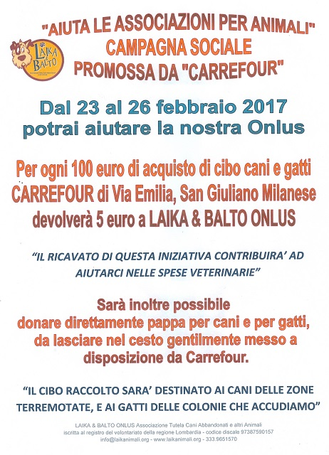 CARREFOUR10001